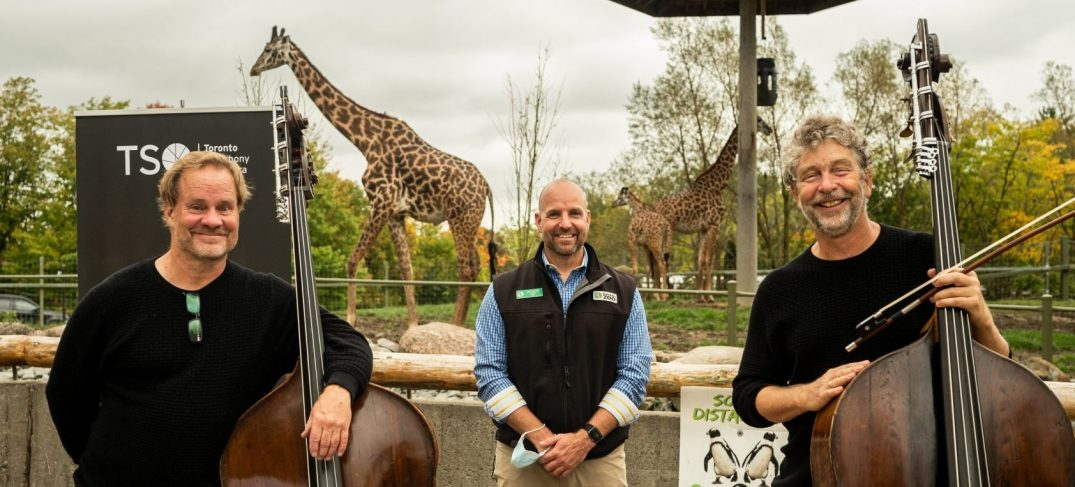 Toronto Zoo and TSO team up to bring young audiences Zoophony this fall