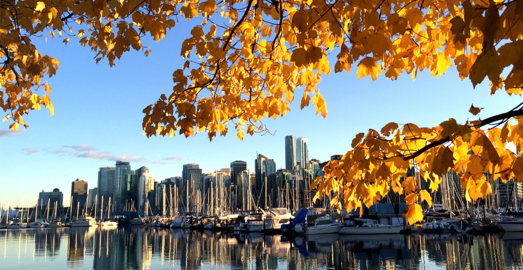 Here's what's open and what's closed this Thanksgiving in Vancouver
