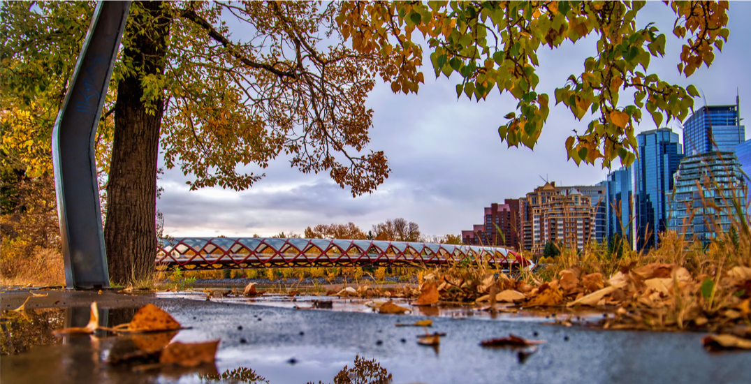 Here's which city services are open and closed on Thanksgiving in Calgary