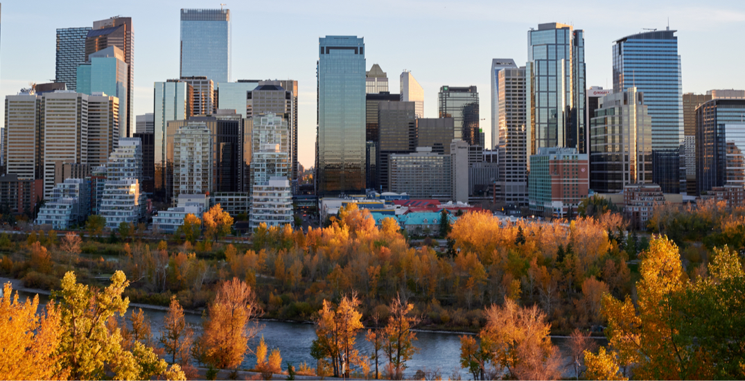 14 things to do in Calgary this Thanksgiving long weekend: October 8 to 11