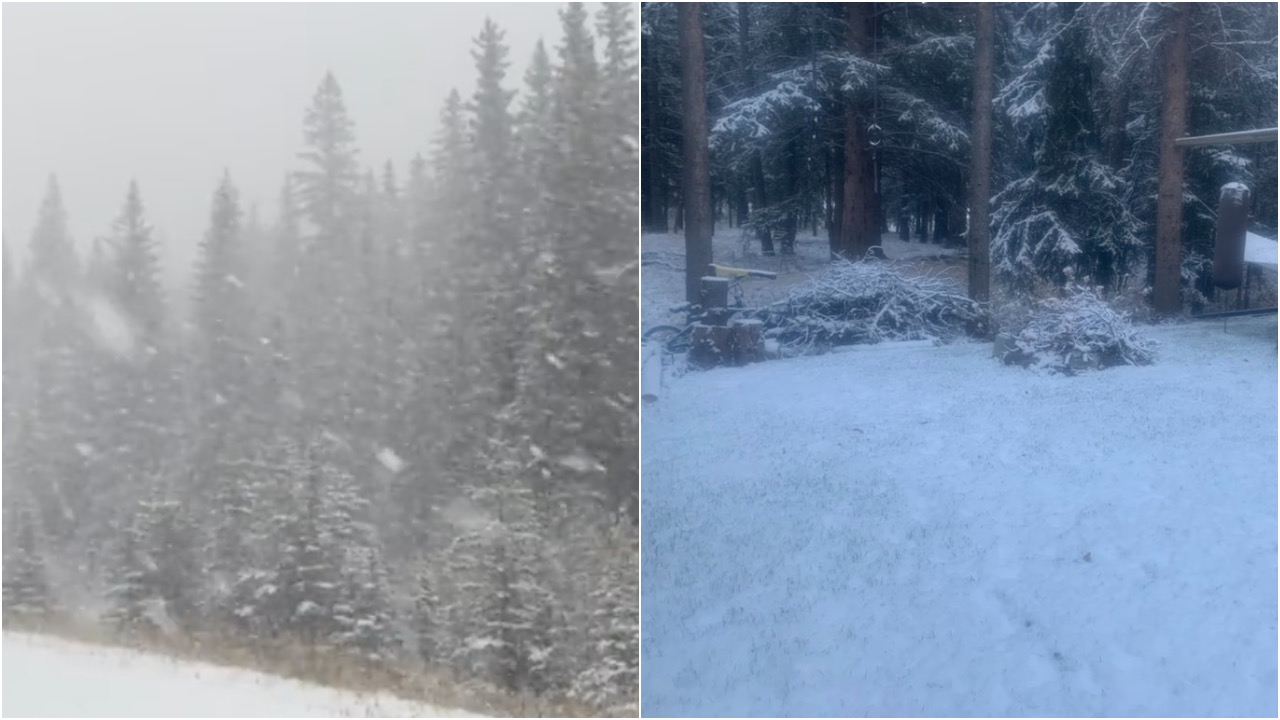 Snow blankets parts of Alberta over Thanksgiving long weekend