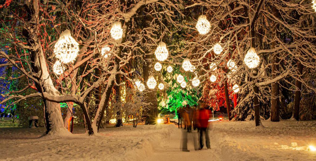 Enchanting holiday light walk coming to Metro Vancouver this winter