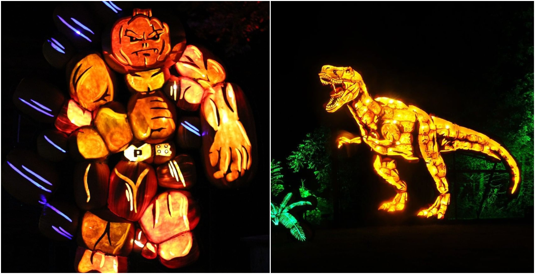 Check out these hand-crafted glowing pumpkins near Montreal all month