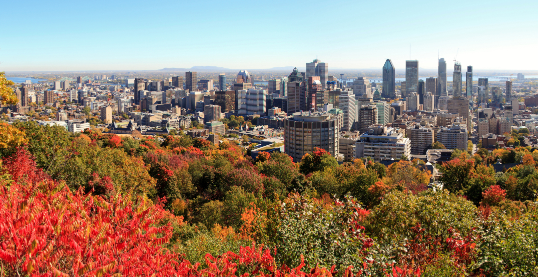 5 things to do in Montreal today: Thursday, October 14