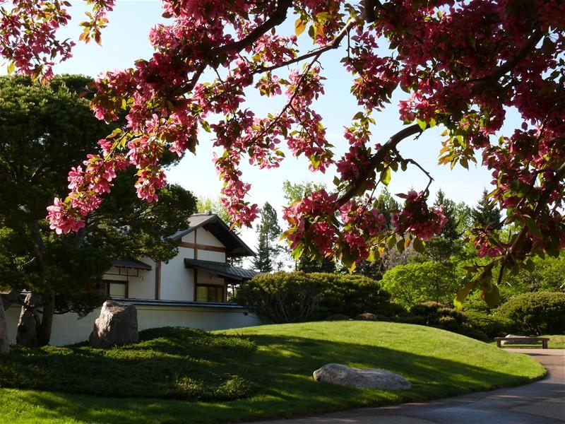 Nikkay Yuko Japanese Garden