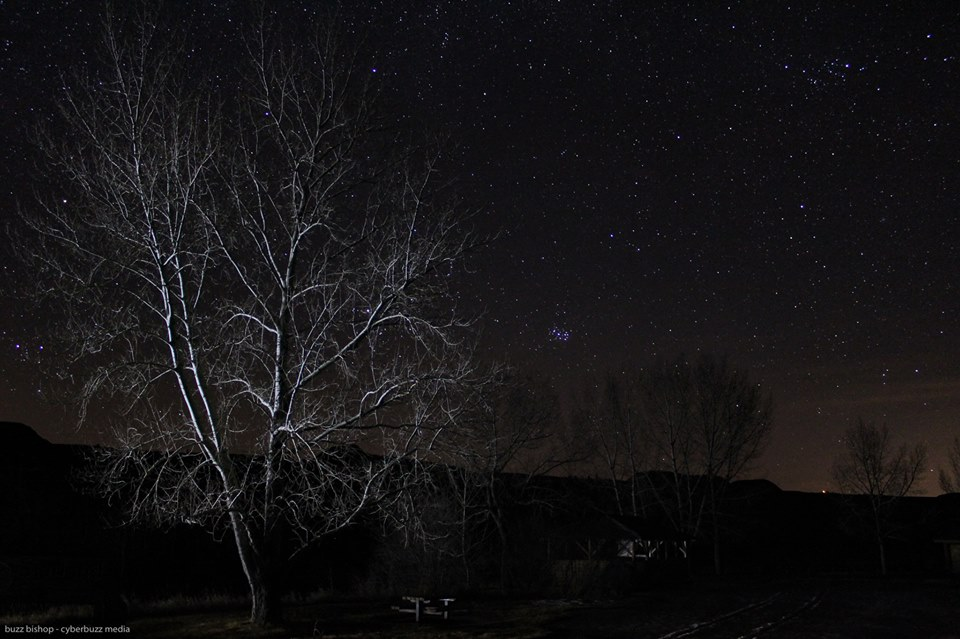 Starland County, Alberta - Buzz Bishop