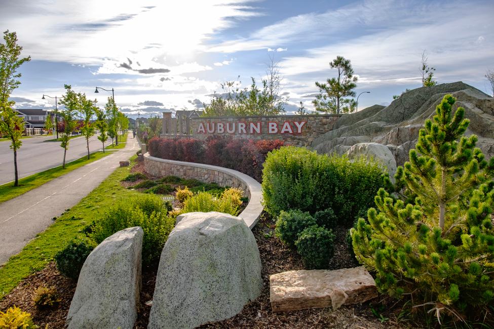 Image: Auburn Bay