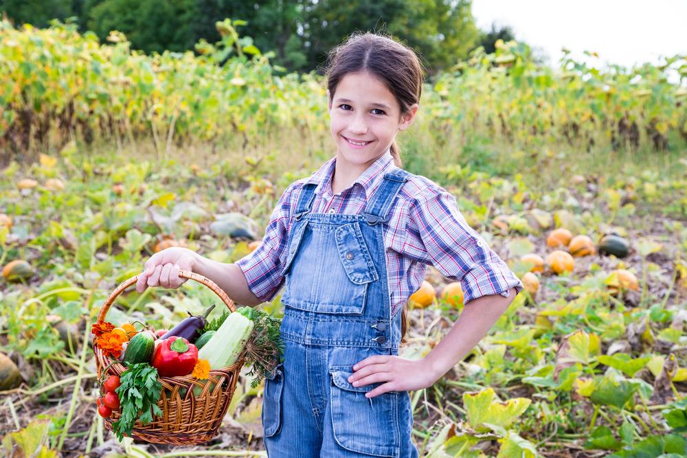 Image: Kid Farmer / Shutterstock