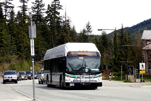 Creekside Transit Bus Tips