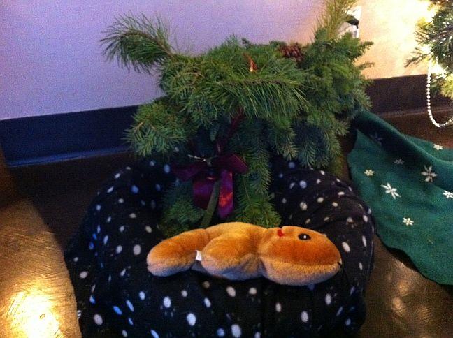 mount_pleasant_wreath_contest_winner
