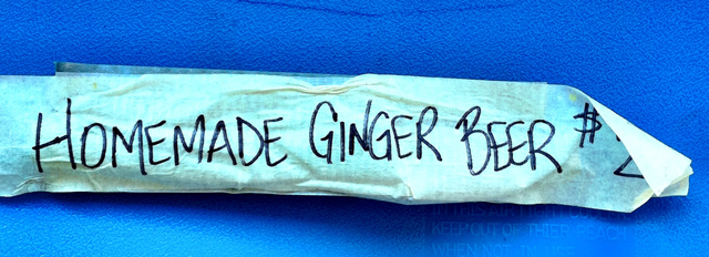 Homemade Ginger Beer - The Reef Runner