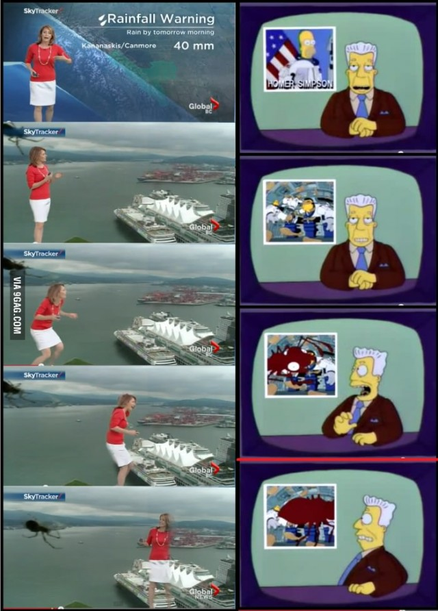 The Simpsons Meme
