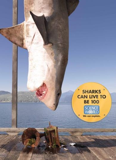Science World Sharks