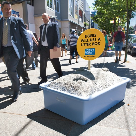 Science World Litter Box