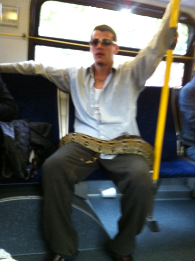 Snake on bus in Vancouver