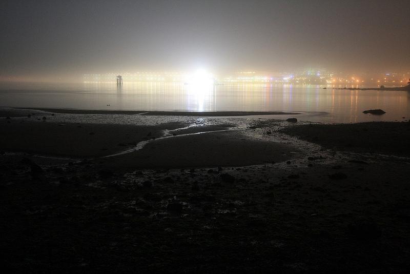Fog Stanley Park2