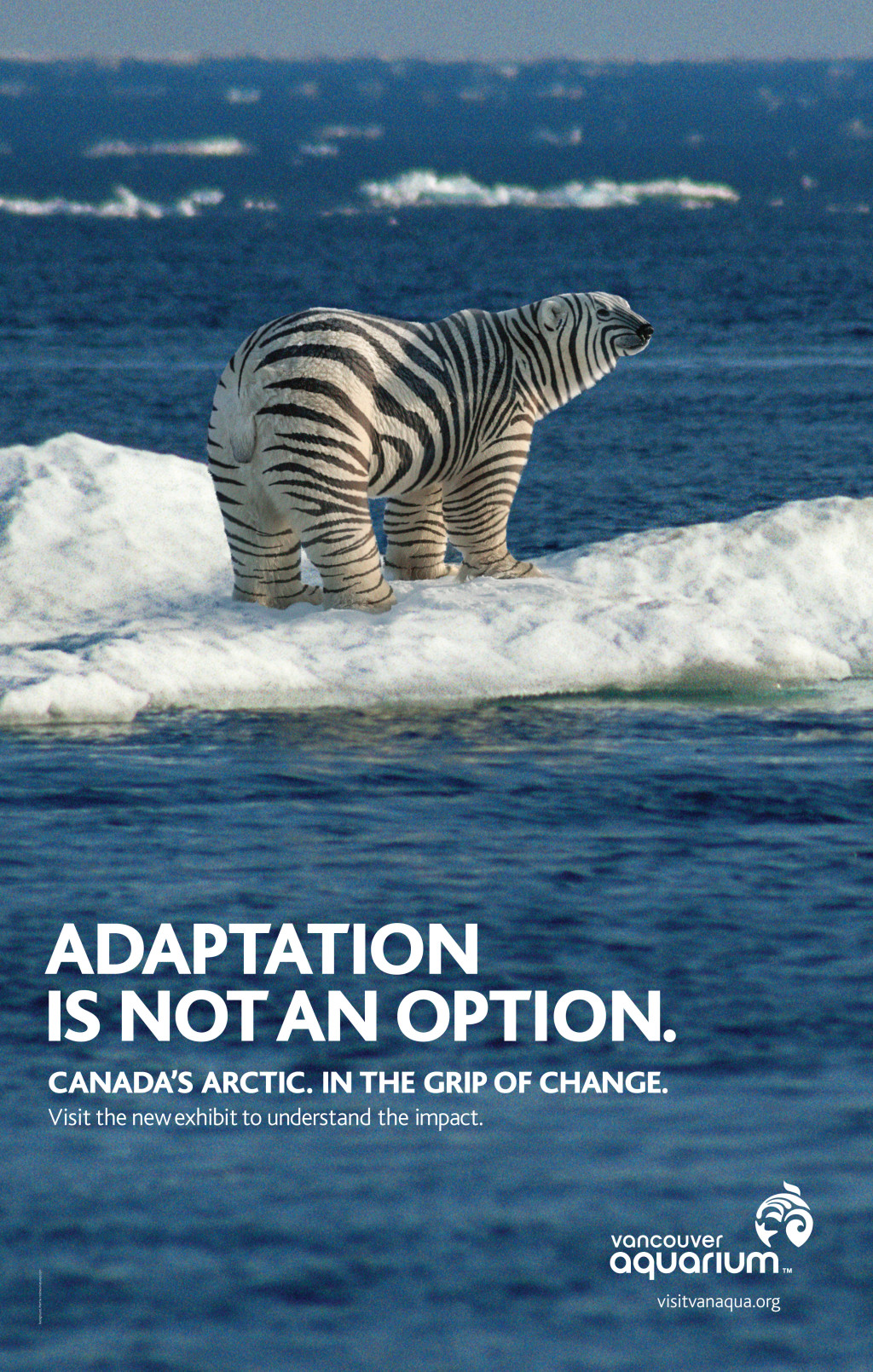 Adaptation3