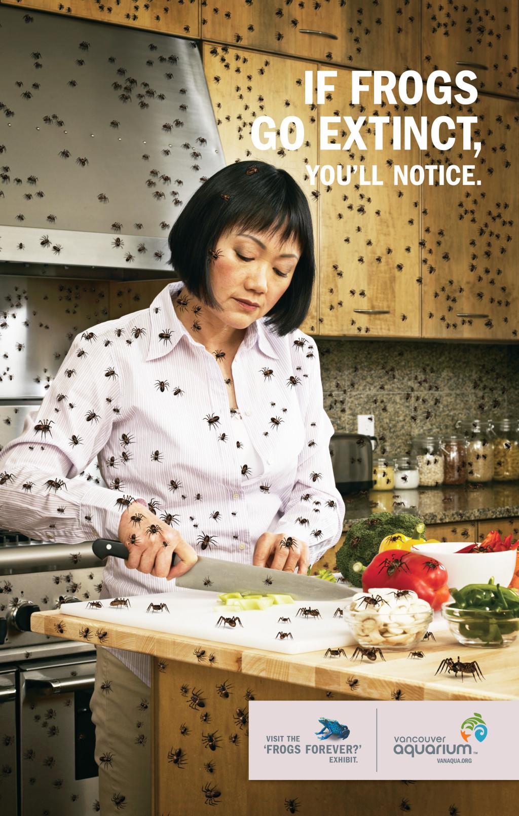 Frog_Spring08_Kitchen