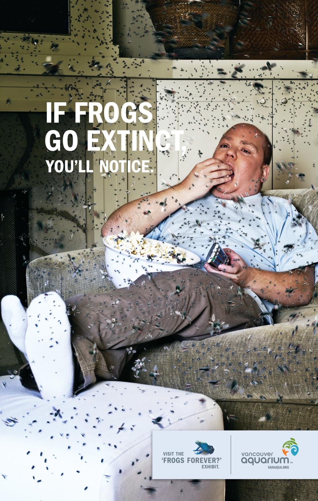 Frog_Spring08_Livingroom