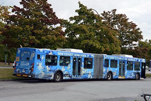 Jelly Invasion Bus Wrap photo 7
