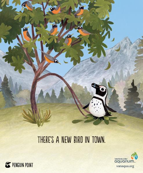 Penguin_Robin