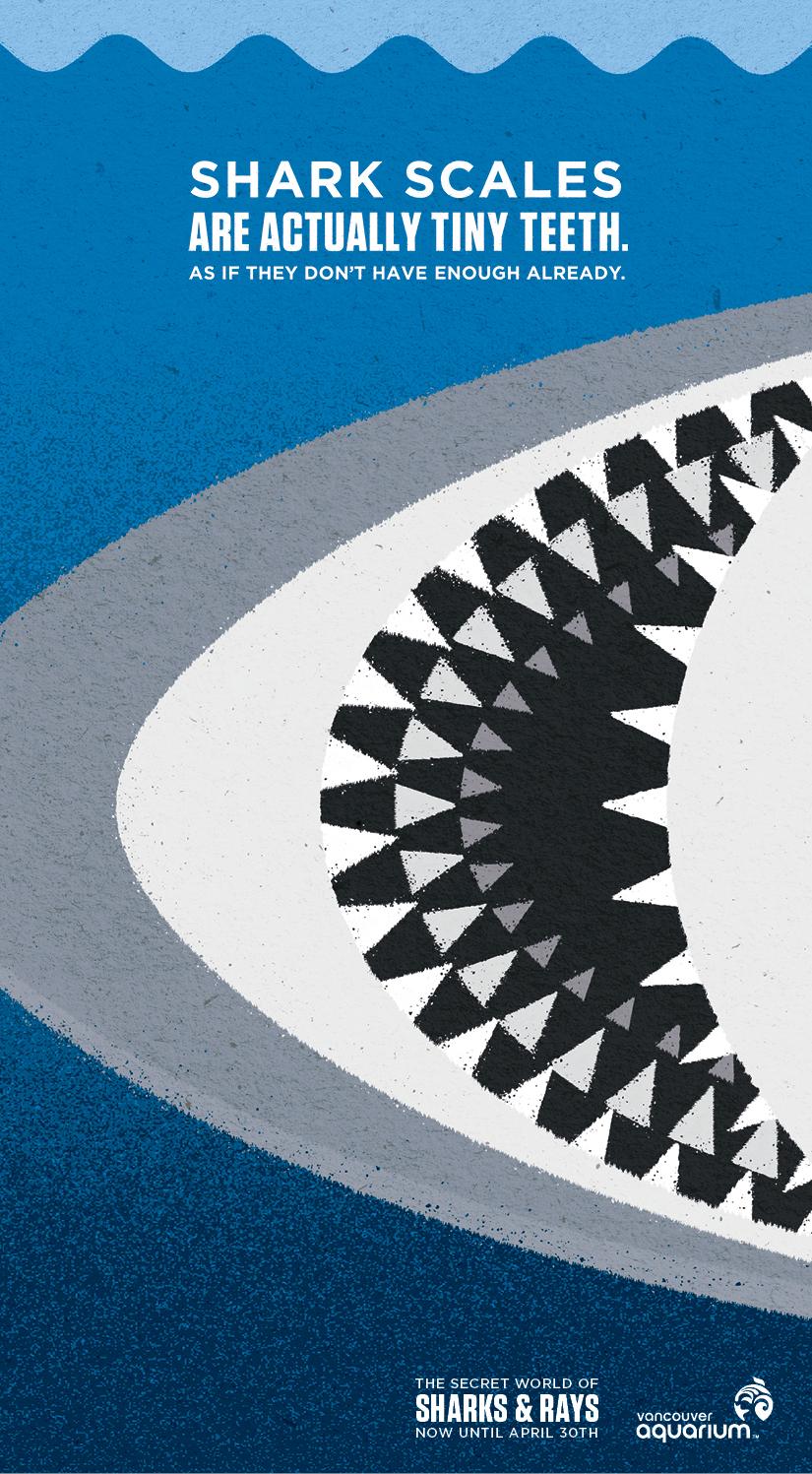 VAQ121027BC_1_VanSun_Sharks&Rays