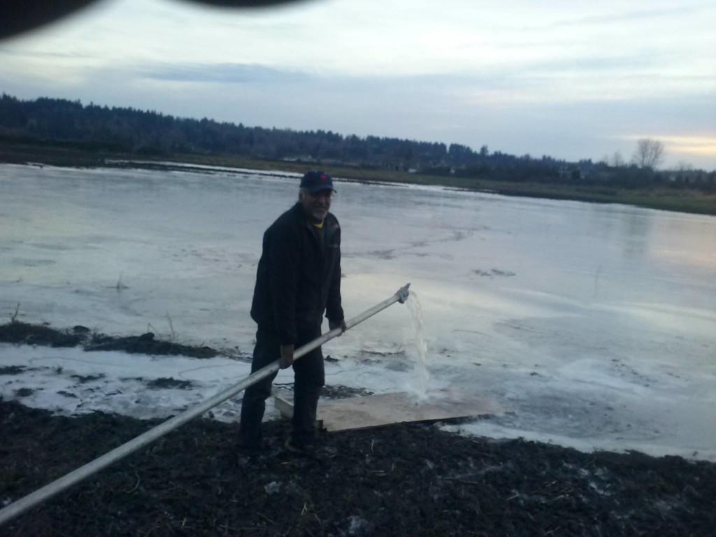 Surrey Outdoor Ice Rink