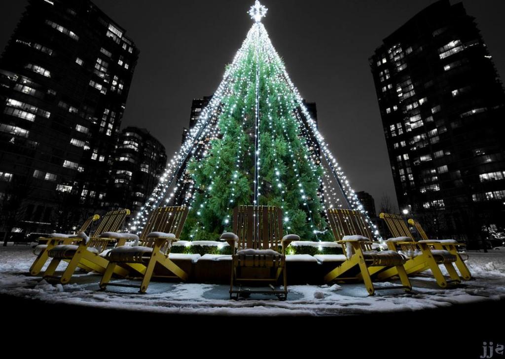 Christmas Tree Yaletown