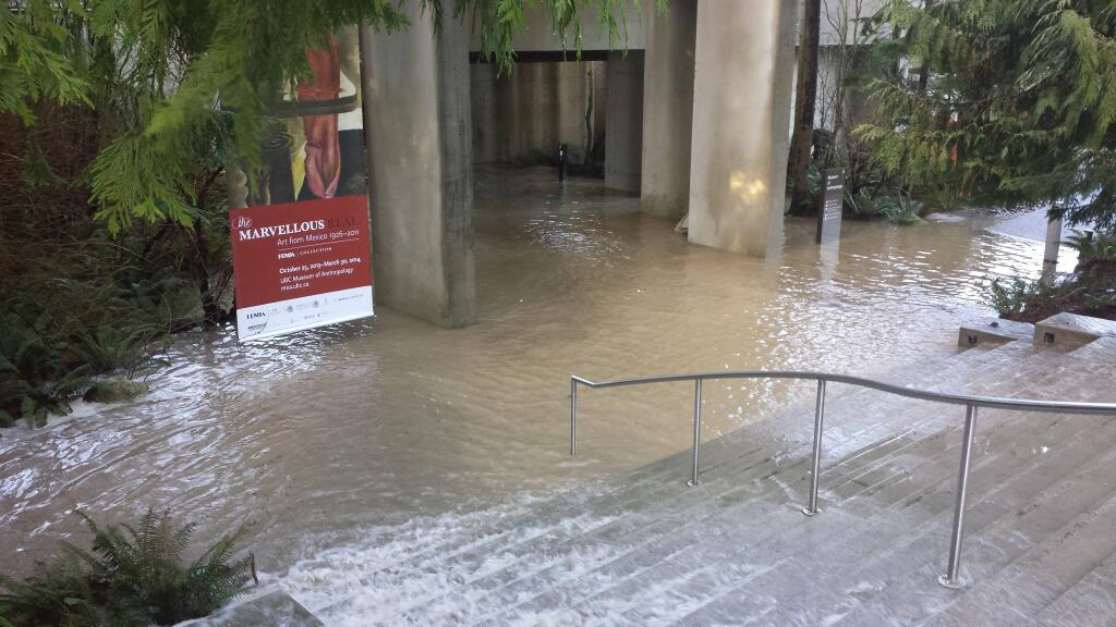 museum of anthropology flood