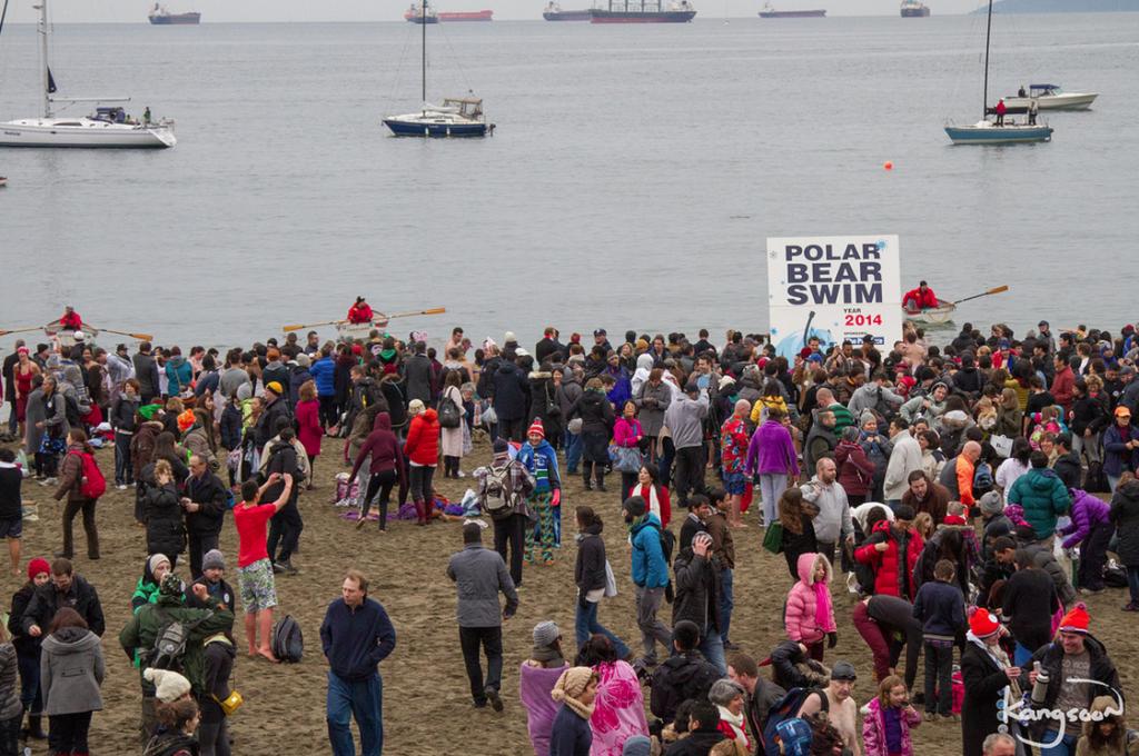Polar Bear Swim Vancouver 2014