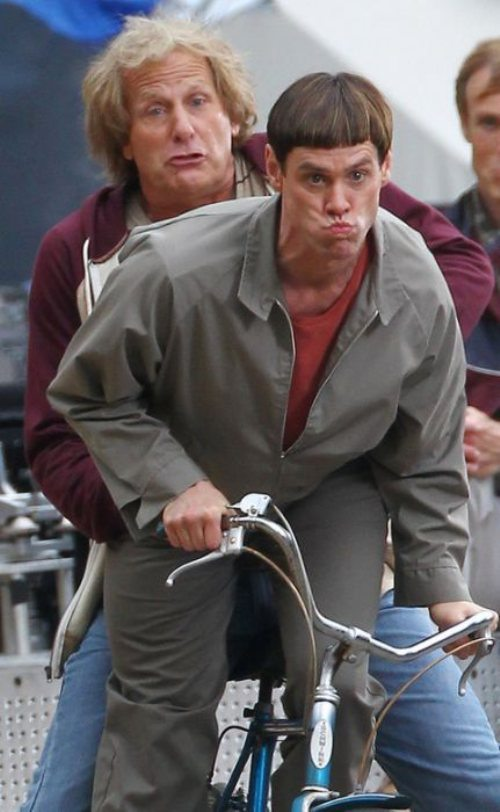 Dumb and Dumber To Poster