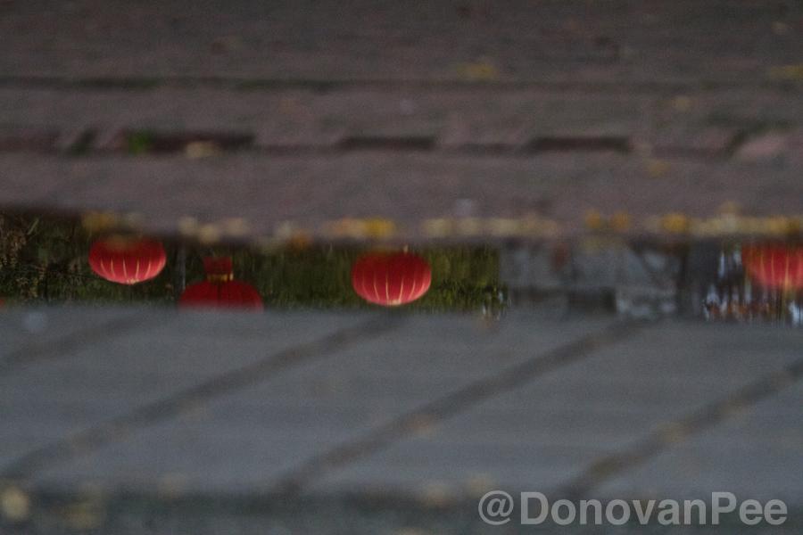 donovanpee reflections 12