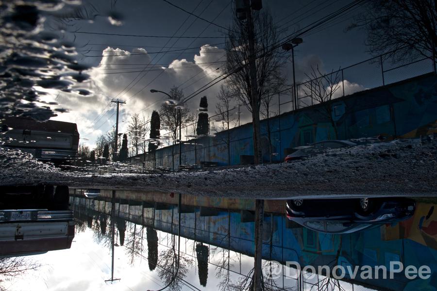 donovanpee reflections 2