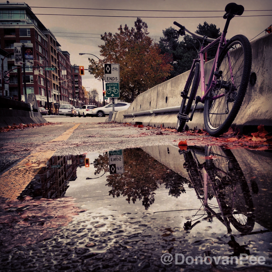 donovanpee reflections 3