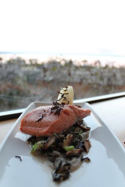lois lake salmon.jpg