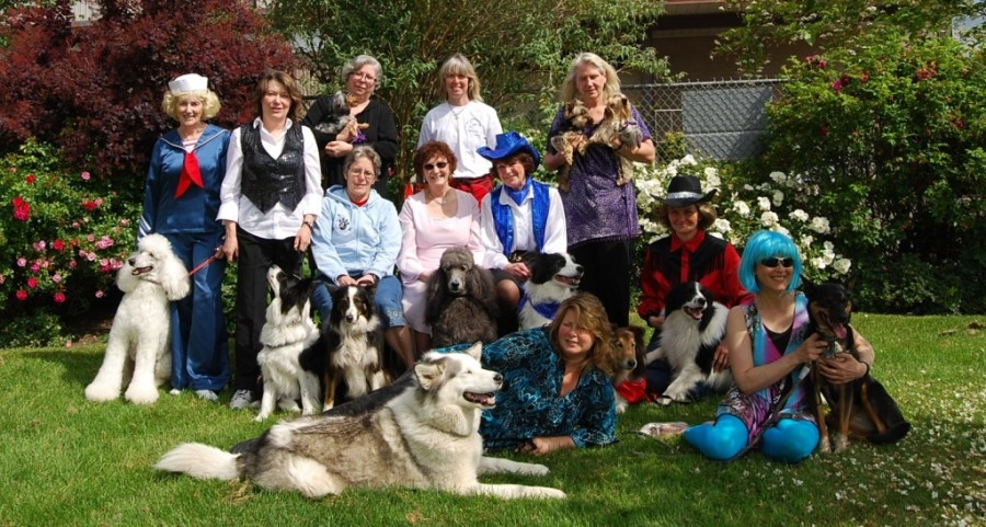 The Paws2Dance dog dancing crew.