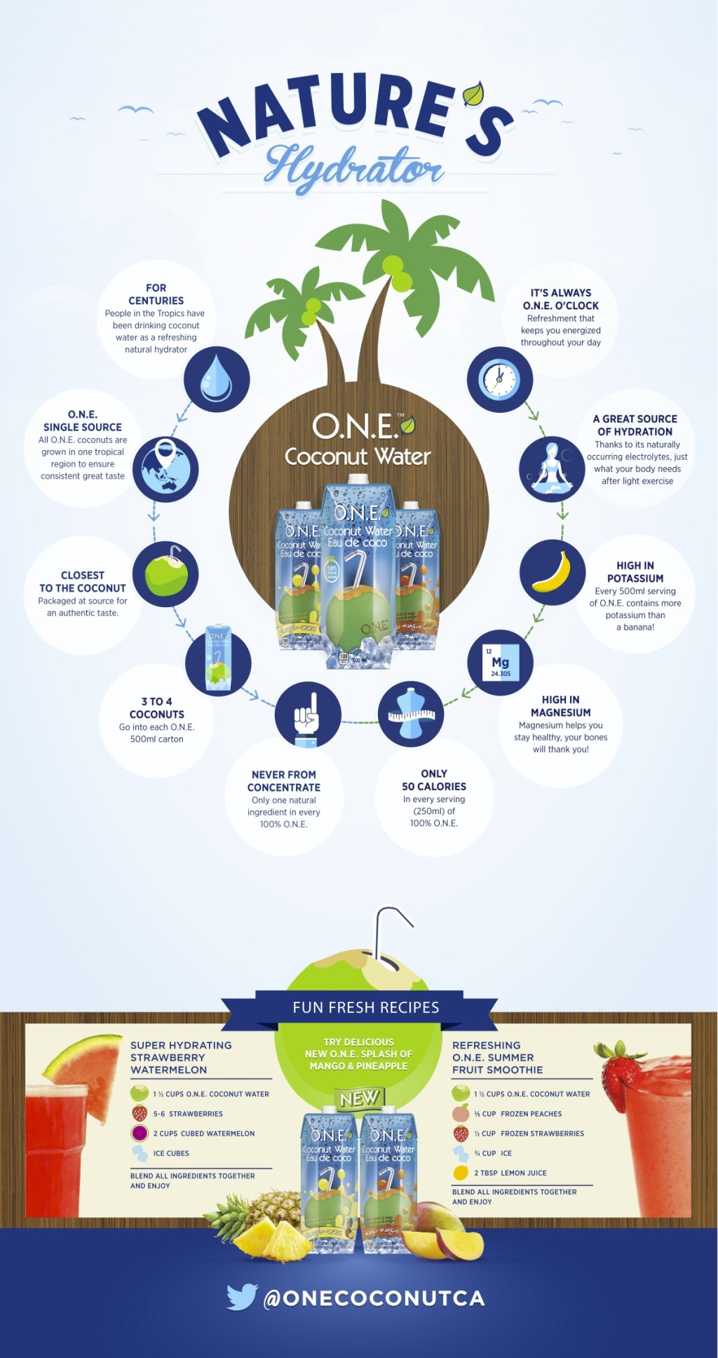 O.N.E_infographic