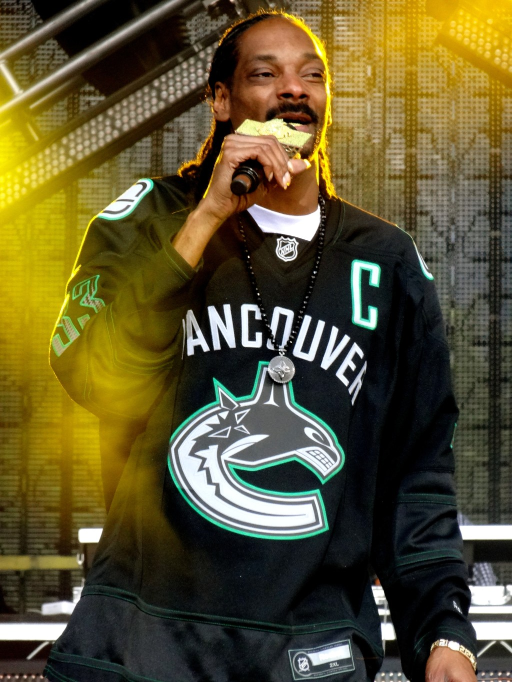 Pemberton Music Festival 2014 Snoop 2