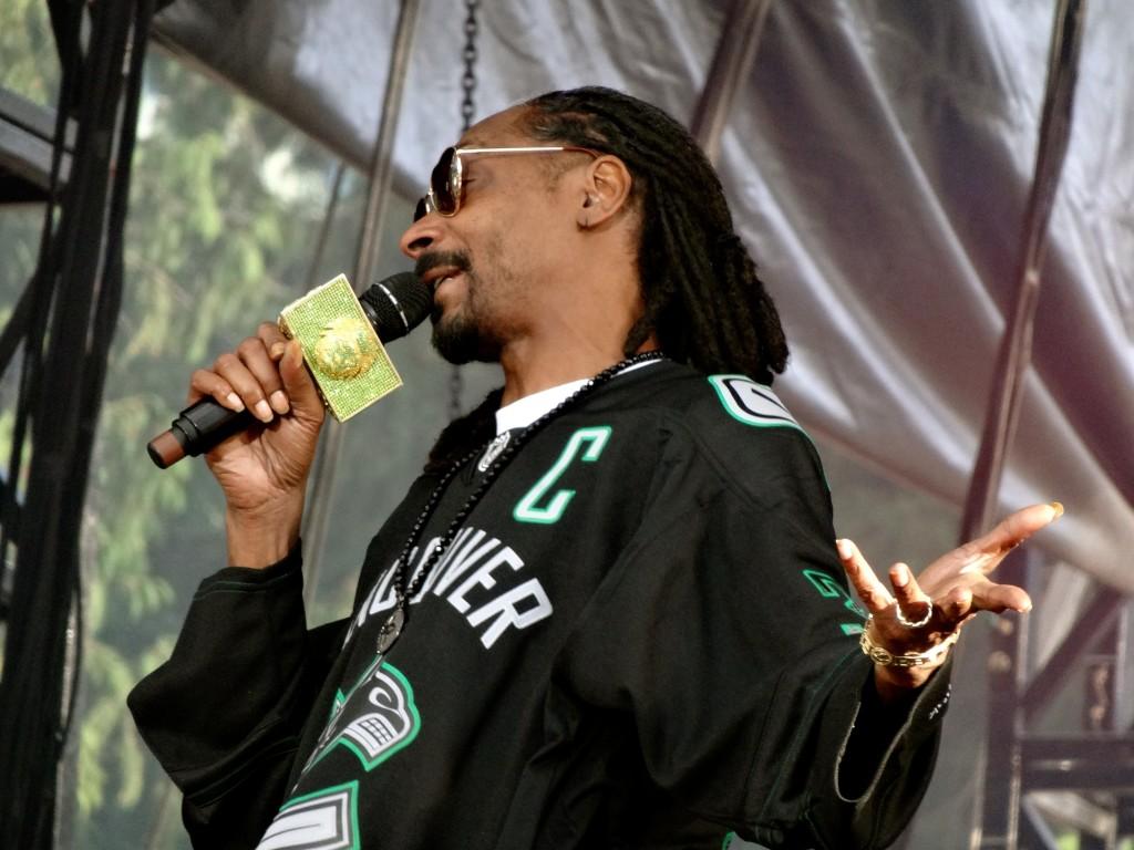Pemberton Music Festival 2014 Snoop 4