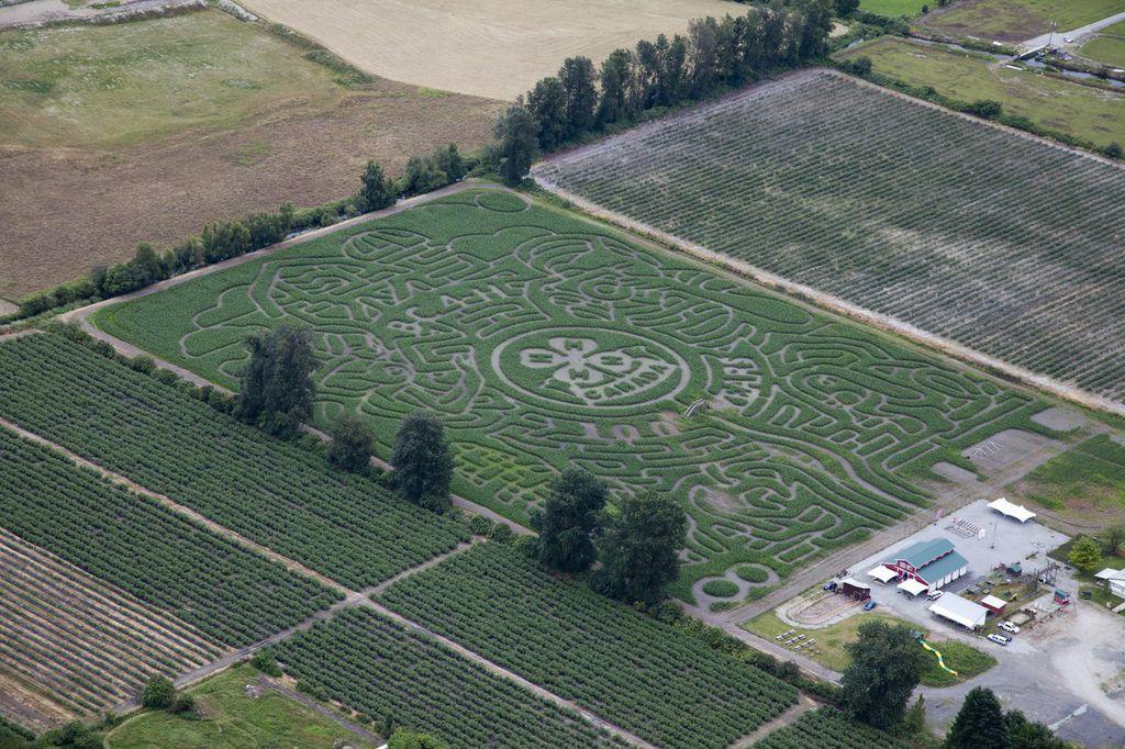 pitt meadows maze 3