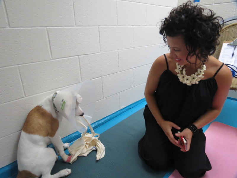 Lilliana de Cotiis, principal, The Loden Hotel, at the SPCA pound.