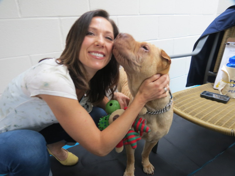 Global TV weather anchor Kate Gajdosik locked in the SPCA kennel (courtesy Meghan Boswell)