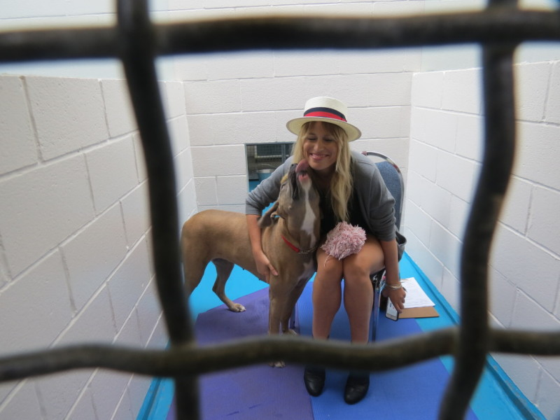 Dog & Crow's Kate Horsman locked in the SPCA kennel (courtesy Meghan Boswell)