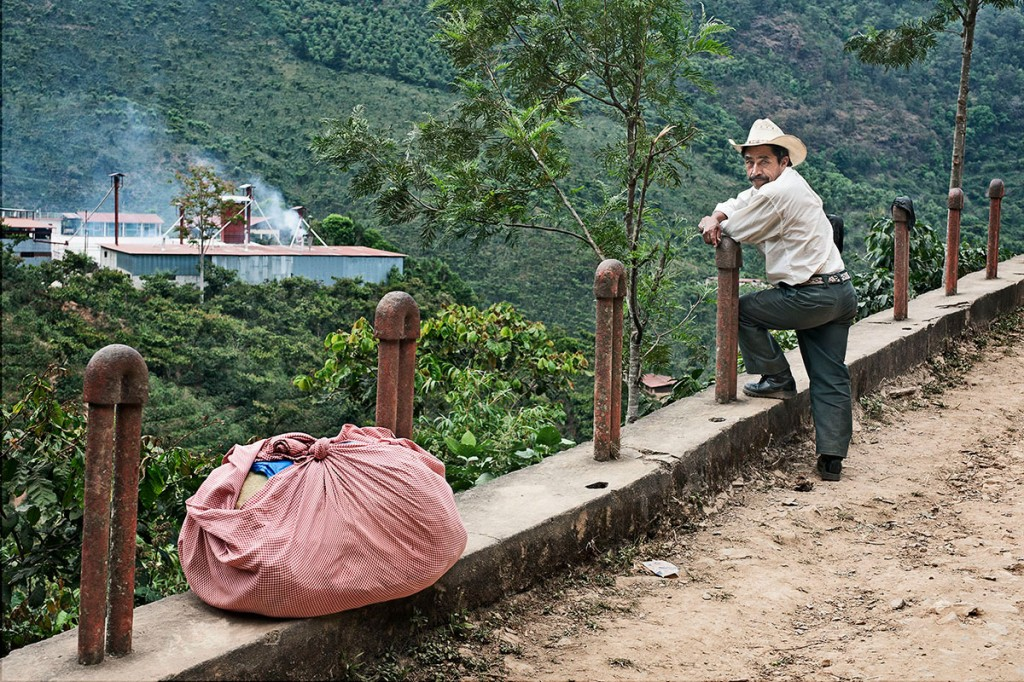 La_Providencia_Coffee_Picker-1024x682