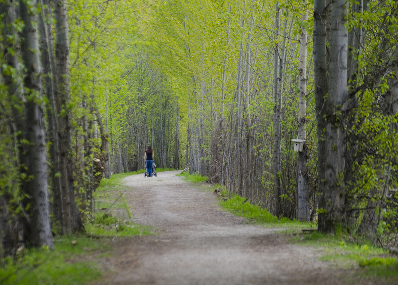Raven Trail 2, Salmon Arm, Shuswap, spring, activities, Darren Robinson