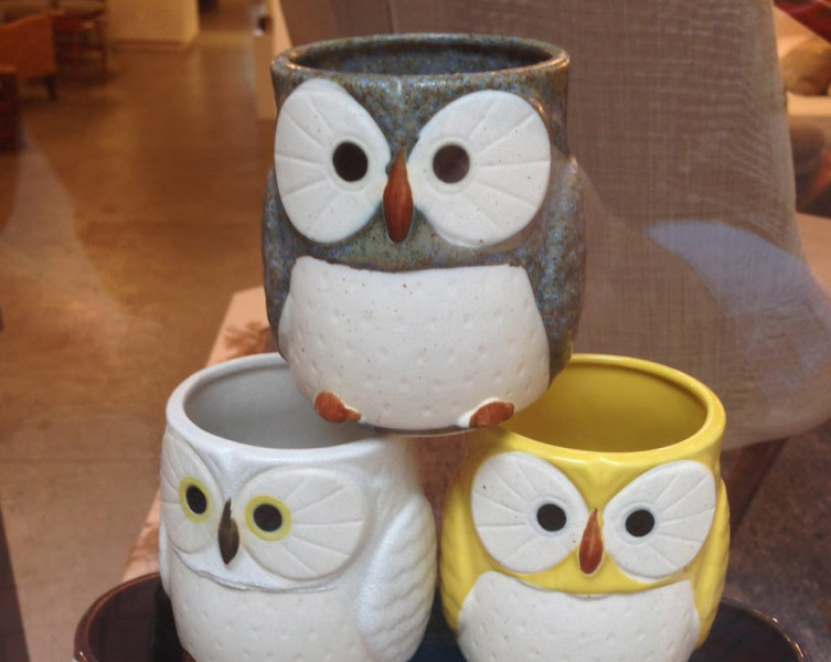 owl-1-cropped (1)