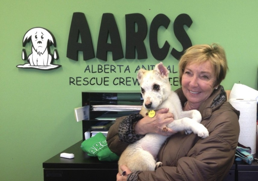 The Alberta Animal Rescue Crew has been named the recipient of this year's Benefit Brew.