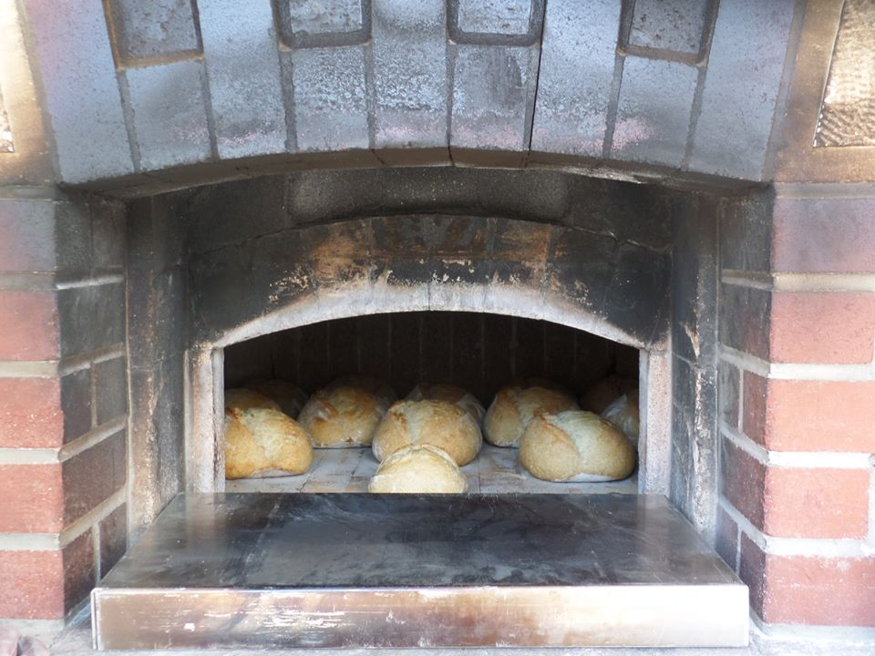 Fire Roasting oven