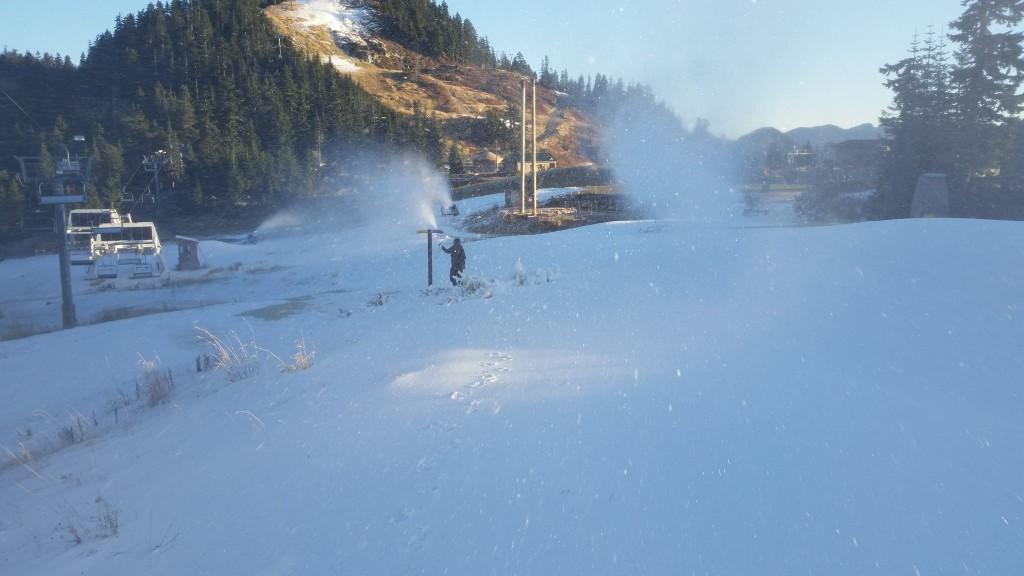 Grouse Mountain 1 2014