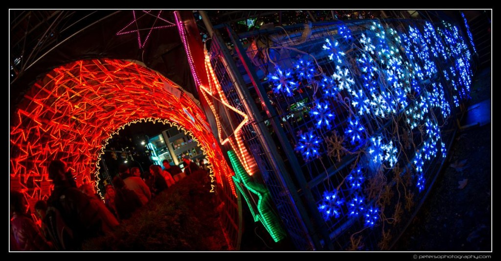 Lights of Hope Vancouver St Paul's Hospital 26